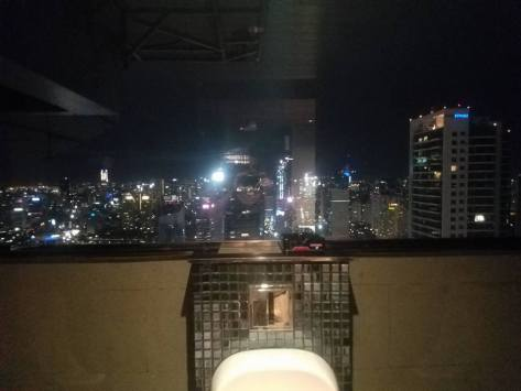 Best urinal view ever!
